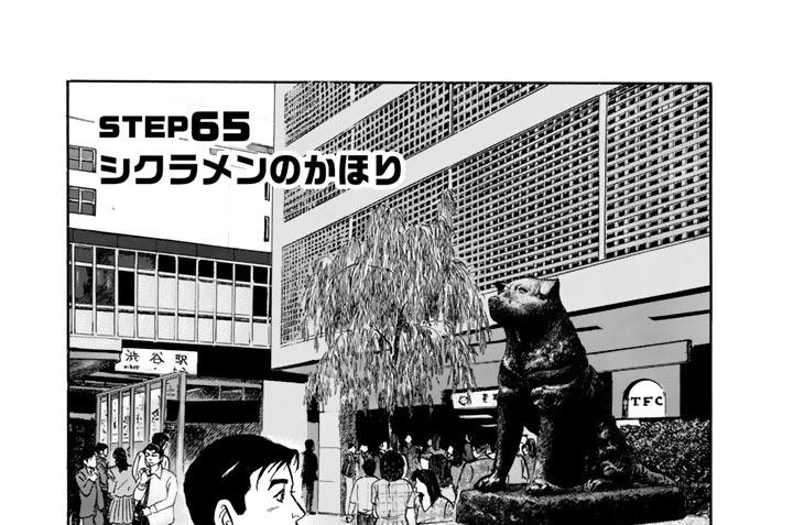 STEP65 シクラメンのかほり