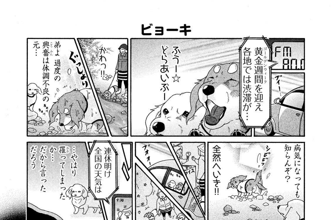 (8)季節病