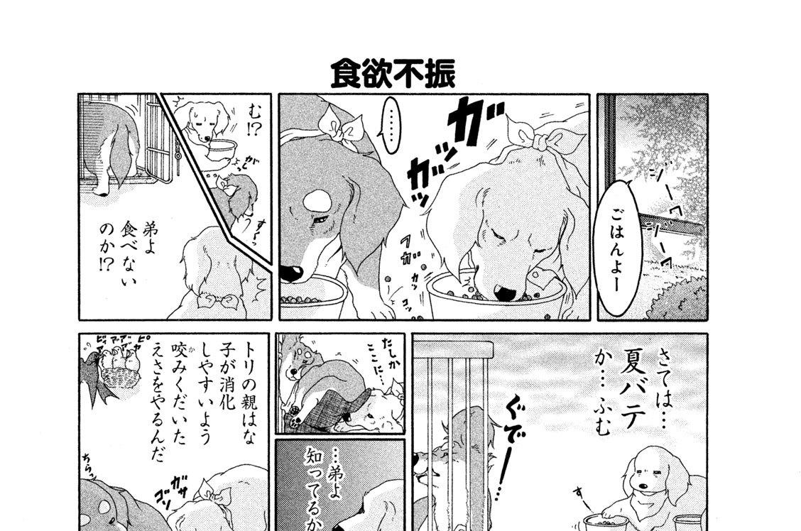 (11)夏バテ