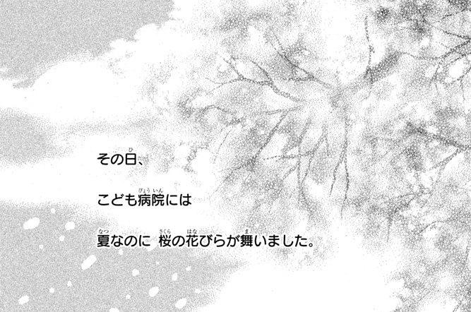file:6 真夏の桜