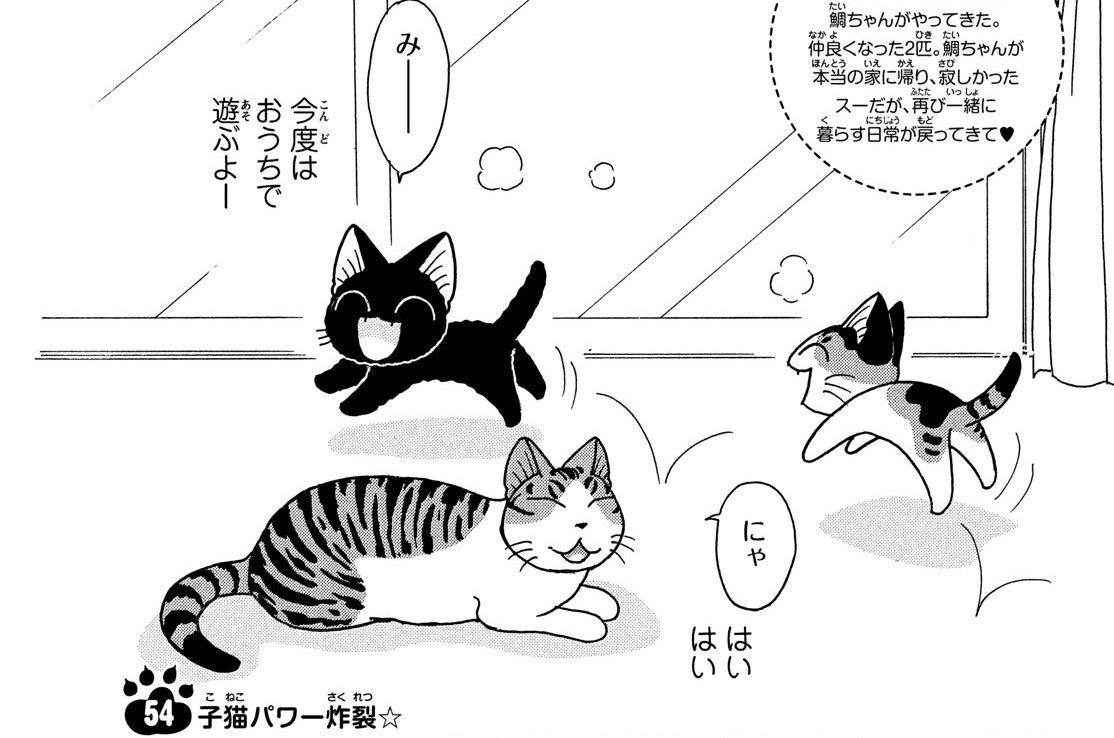 第54話 子猫パワー炸裂☆