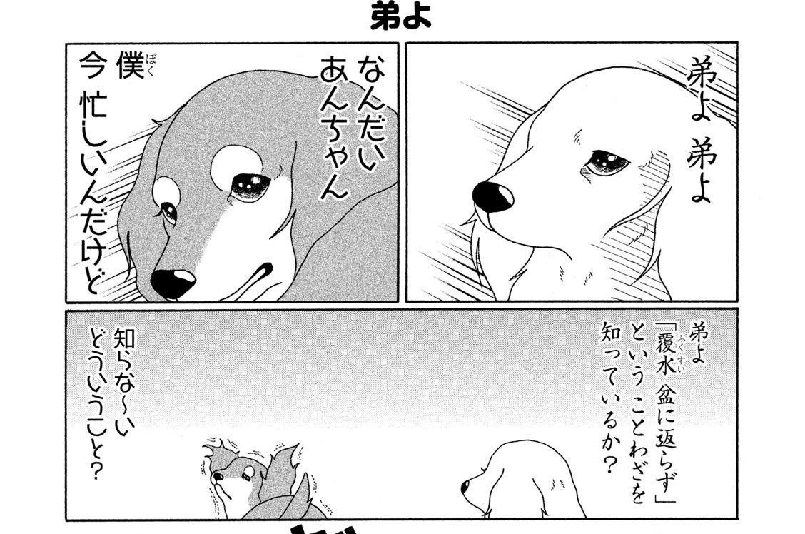 (1)あんちゃんと弟