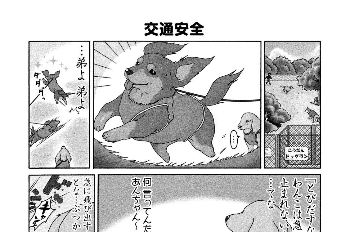 (2)ドッグラン