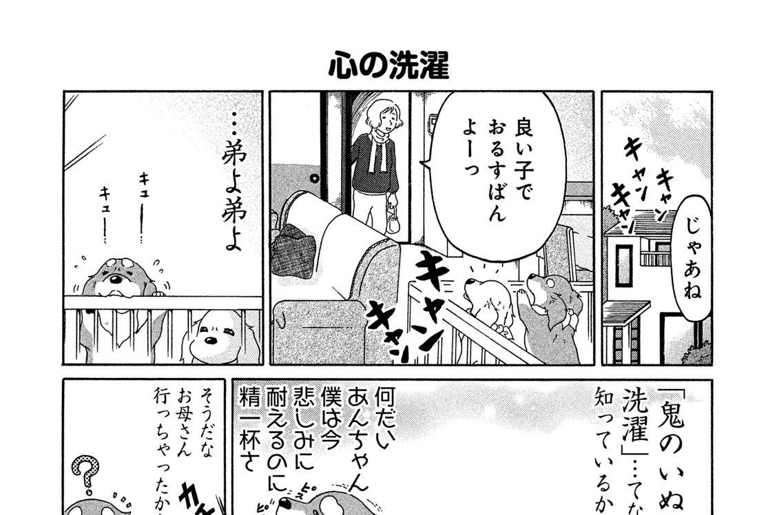 (4)お留守番
