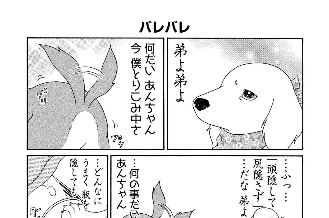 (5)隠し事