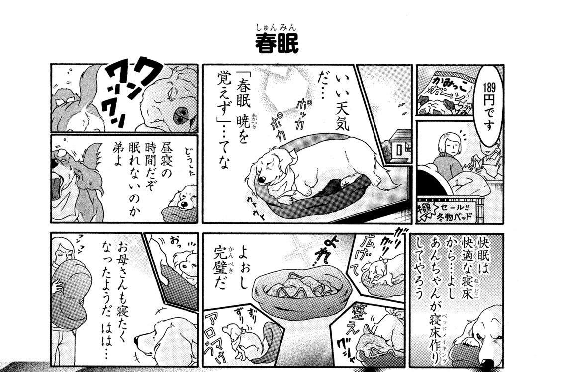 (5)ベッド