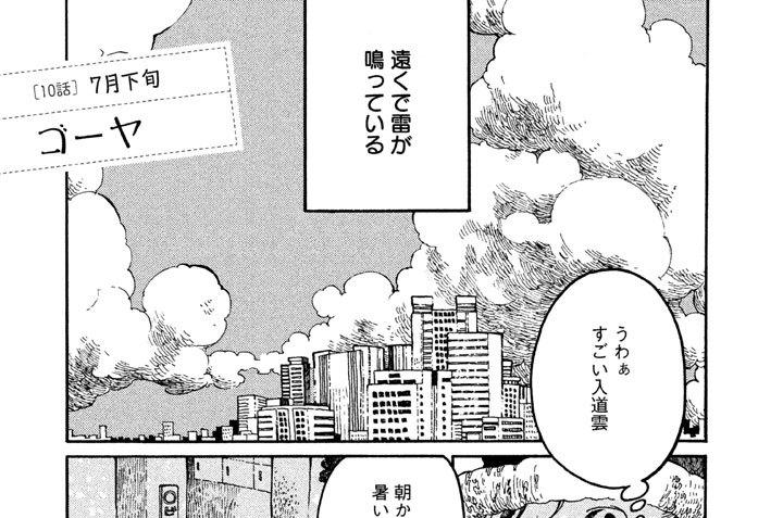 [10話] 7月下旬 ゴーヤ