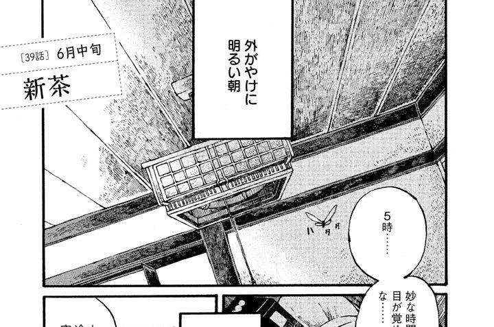 [39話] 6月中旬 新茶
