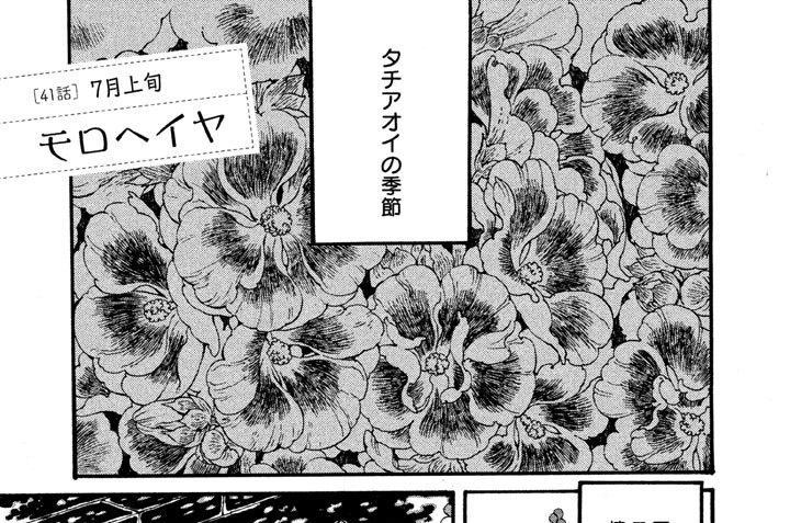 [41話] 7月上旬 モロヘイヤ