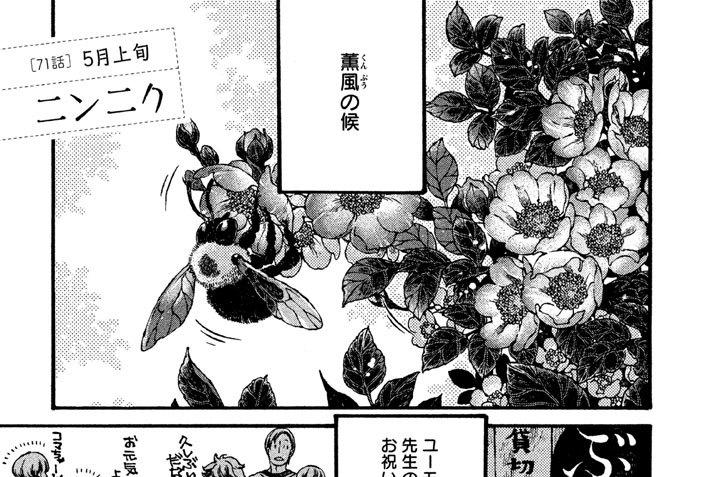 [71話] 5月上旬 ニンニク