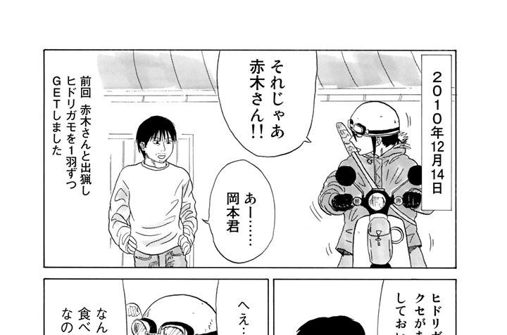 第七十五矢目 ヒドリガモ