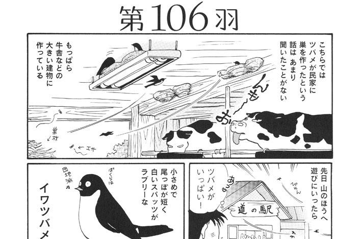 第106羽