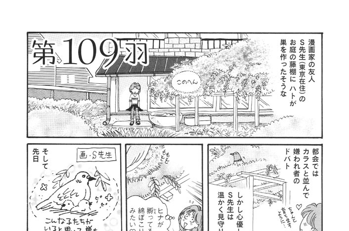 第109羽