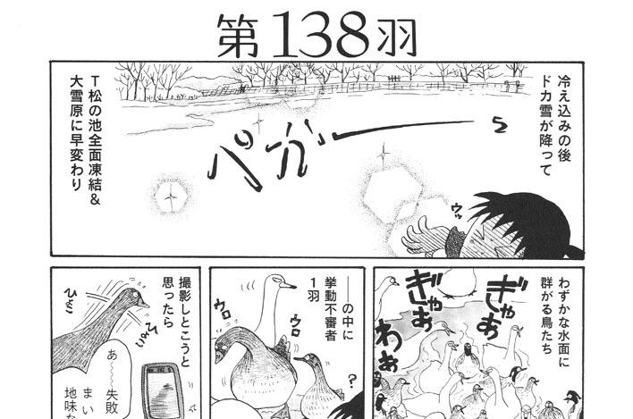 第138羽