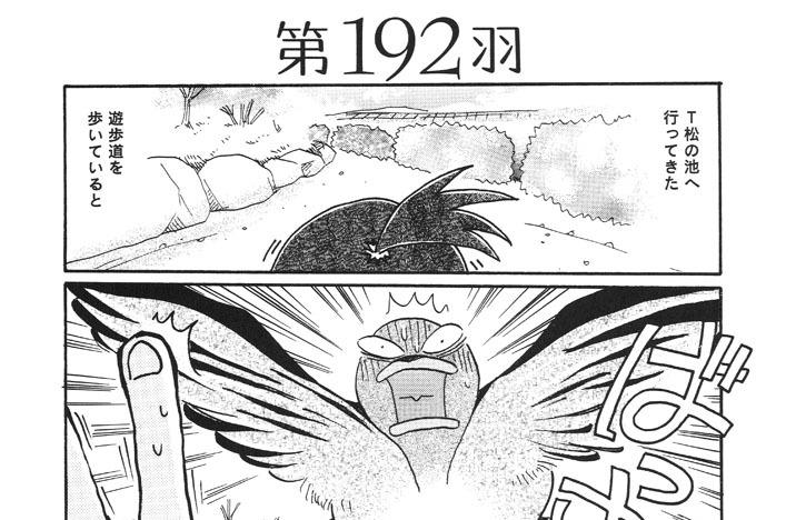 第192羽