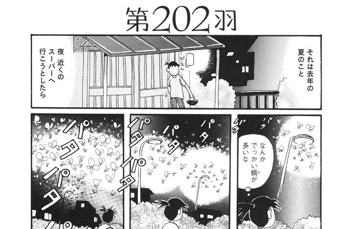第202羽