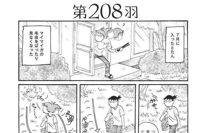 第208羽