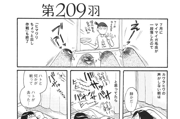 第209羽