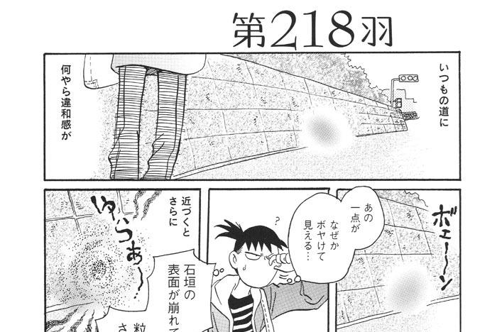 第218羽