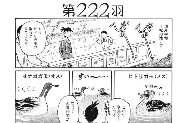 第222羽
