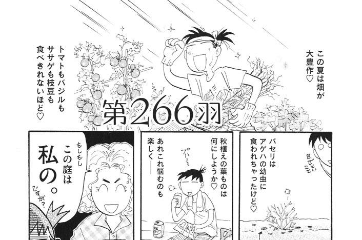 第266羽