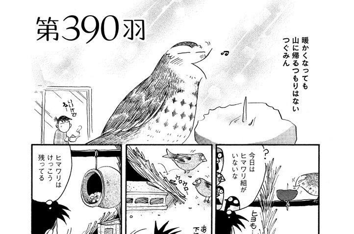第390羽