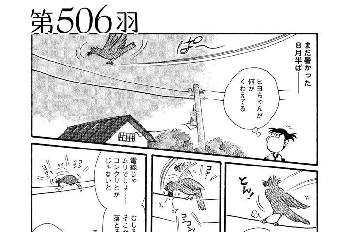第506羽