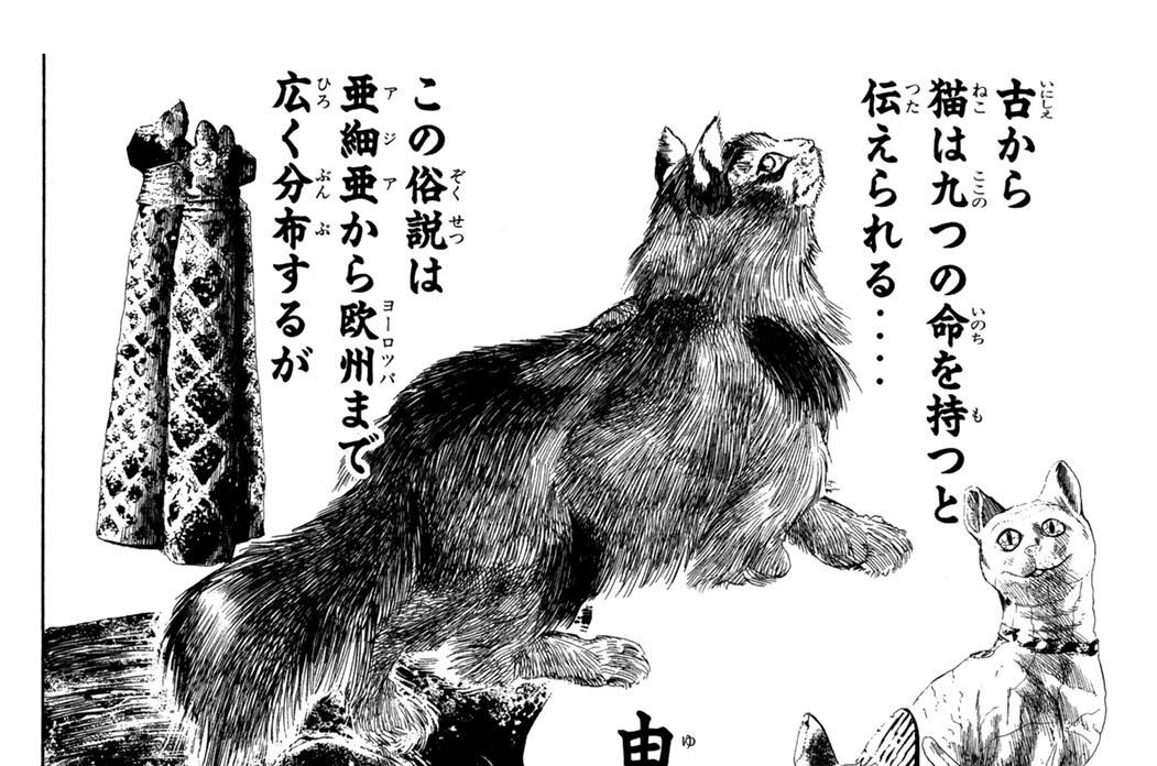 第三話 猫と九つの命